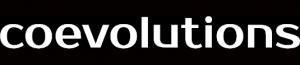 Logo CE W Solo scrittasu nero2